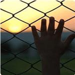 La violazione dei diritti umani